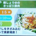 しゃべる!DSお料理ナビ【レビュー・評価】DSでお料理♪