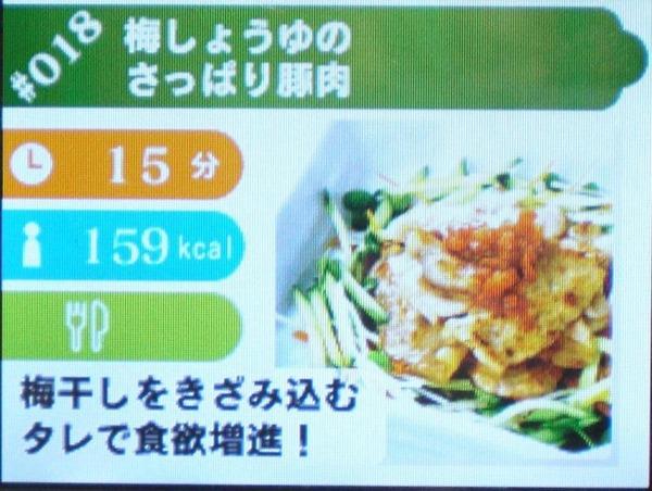 DSでお料理♪しゃべる!DSお料理ナビ 発売2周年記念レビュー