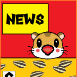 【ゲーム情報まとめ】シングルプレイに特化したスター・ウォーズの新作ゲームが年末に発売決定!マリテニエースが大幅アップデート!?他【最新ニュース】